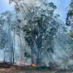 Wivenhoe environmental burn